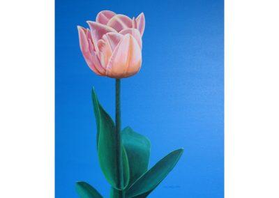 Pinkish Flower, 16x20